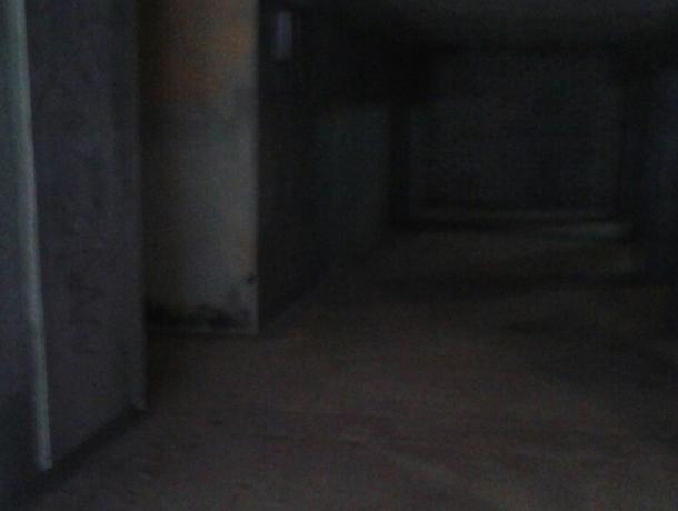 Переход у Воронежского Политеха сравнили с декорациями для триллера
