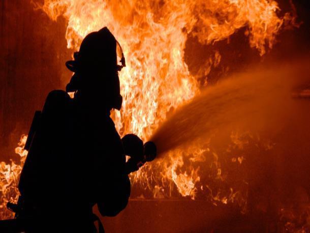 Мать с сыном погибли  при пожаре дома в Воронежской области