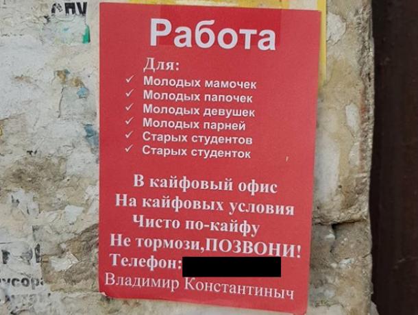 Объявление о кайфовой работе для мамочек развесили в Воронеже