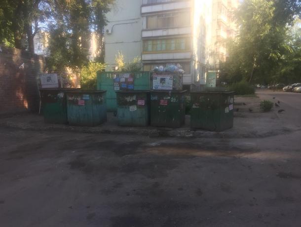Мэрия оперативно разобралась с мусорными горами после публикации «Блокнот Воронеж»