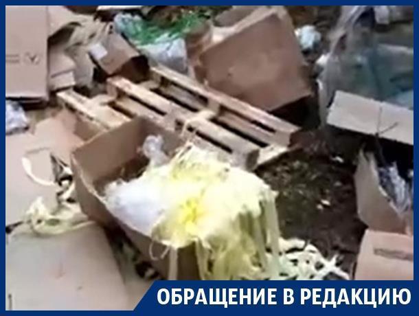 Воронежский лес превратился в мусорку с неприятным запахом ацетона