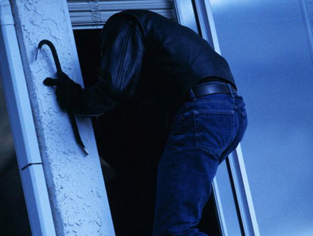 Массовый грабеж дачных домов остановили под Воронежем