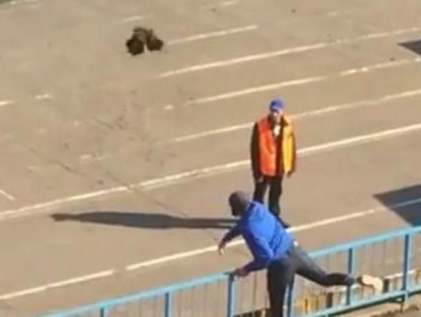 Воронежскому «Факелу» грозит штраф за чужого петуха