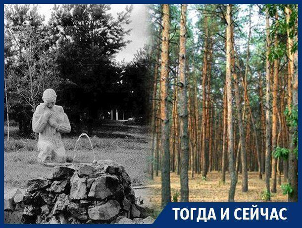 Юго-Западный микрорайон Воронежа – от деградации 90-х до железной дисциплины Аристова