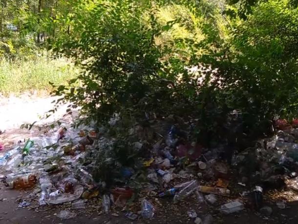 Воронежский Машмет скрылся под слоем мусора