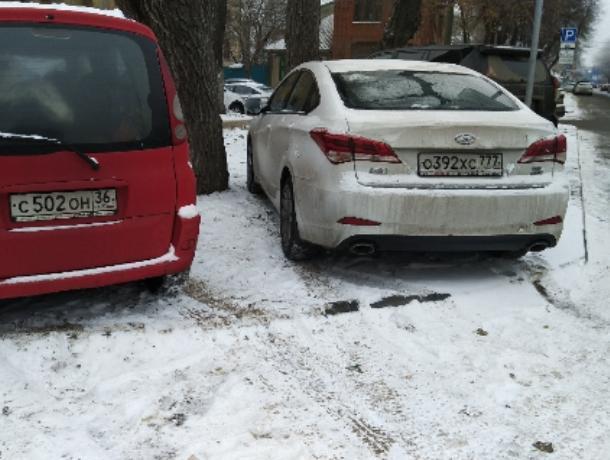 Уход от платной парковки по-московски показали в Воронеже