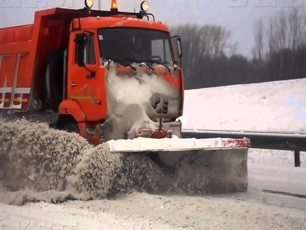 40 млн руб выделили избюджета Воронежа напокупку снегоуборочной техники