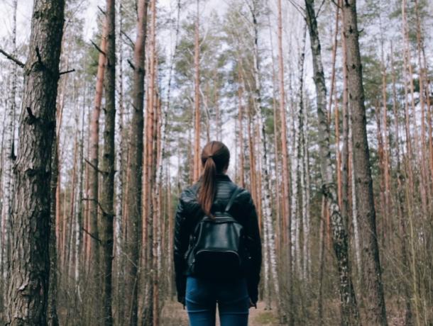 Жительница Воронежа предупредила о хватающем за зад извращенце в лесу