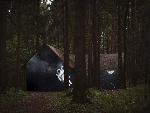 Фото воронежского леса признали лучшим на международном конкурсе