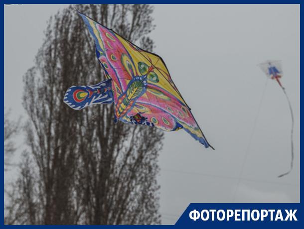 Любители заигрывать с ветром оказались сильнее непогоды в Воронеже