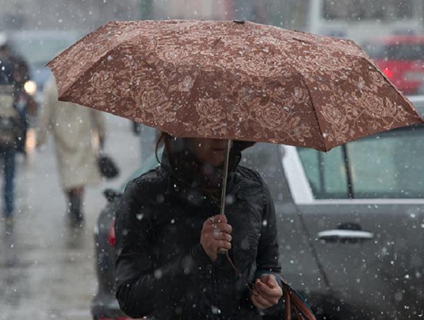 Синоптики обещали воронежцам потепление нарабочей неделе— Зимняя капель