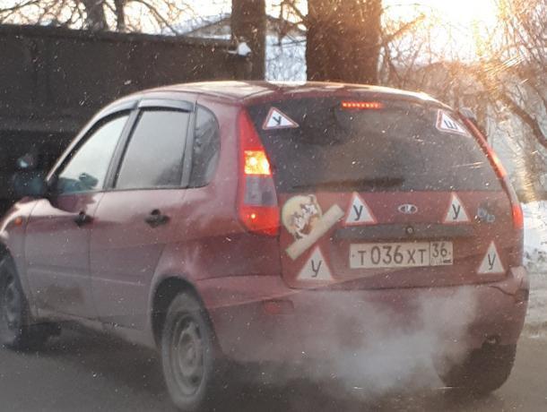 В Воронеже высмеяли вечного ученика на «Ладе» с кучей наклеек