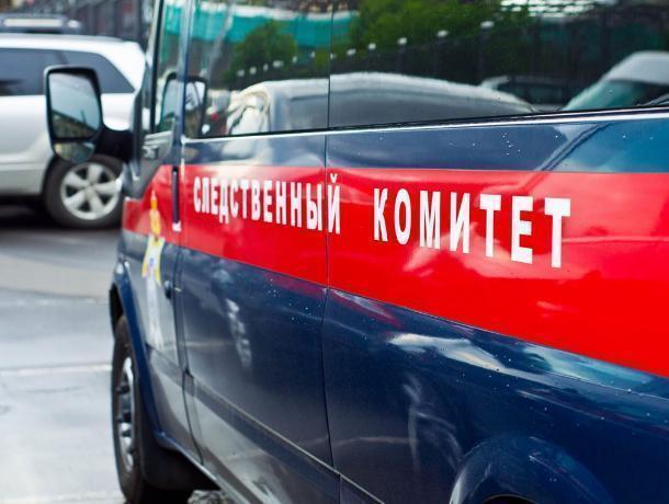 Воронежские следователи завели дело одоведении досамоубийства школьницы