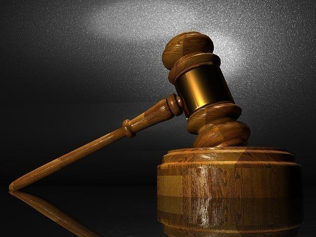 Чиновники нелегально «подарили» воронежцу участок земли около заповедника— Места неотдаленные