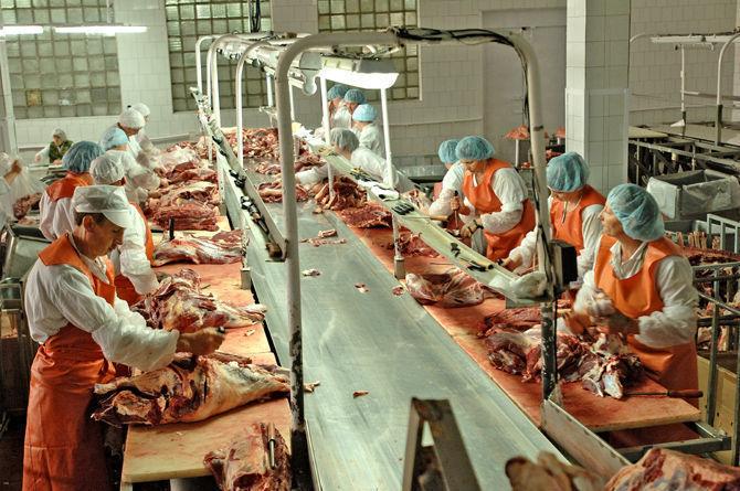 За10 млрд: вВоронежской области построят большой мясокомбинат