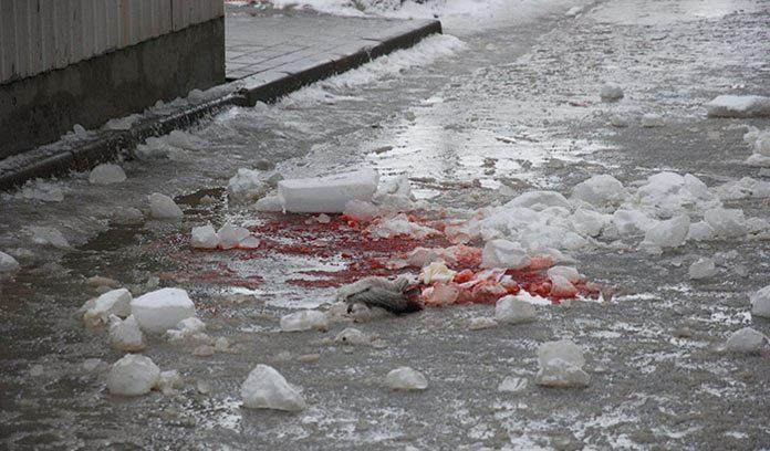 ВВоронеже мужчину убило упавшей сосулькой