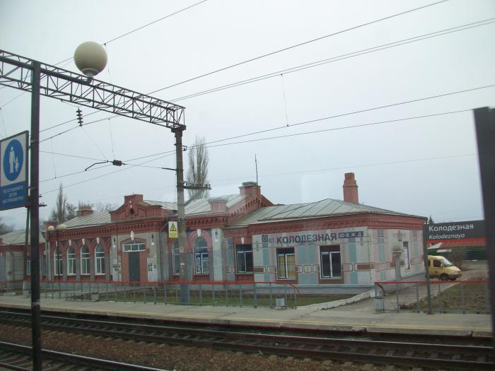 Под Воронежем пассажирский поезд сбил пенсионерку