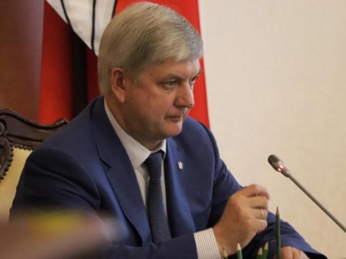 Александру Гусеву отвели 1,5 года на спасение имиджа губернатора