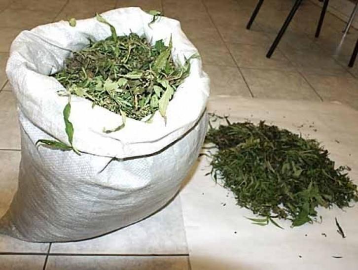 Купить коноплю в воронеже как вывести марихуаны из крови