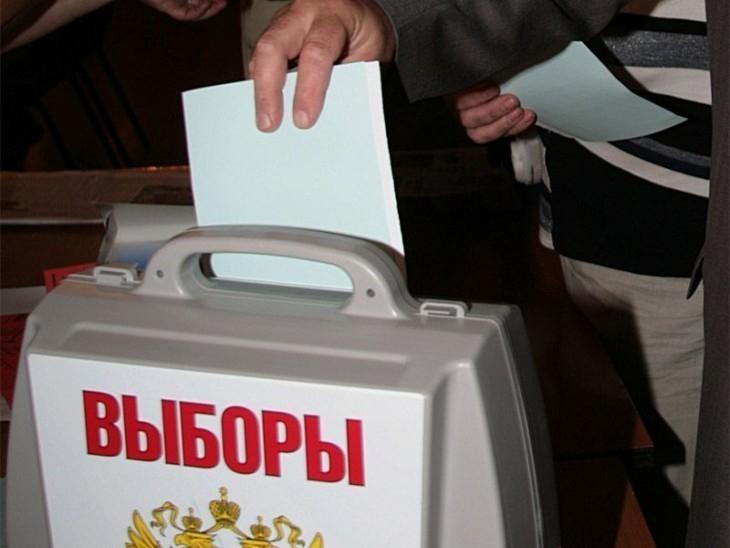 В Воронеже за полчаса до окончания выборов на участки пришло 22,11% избирателей