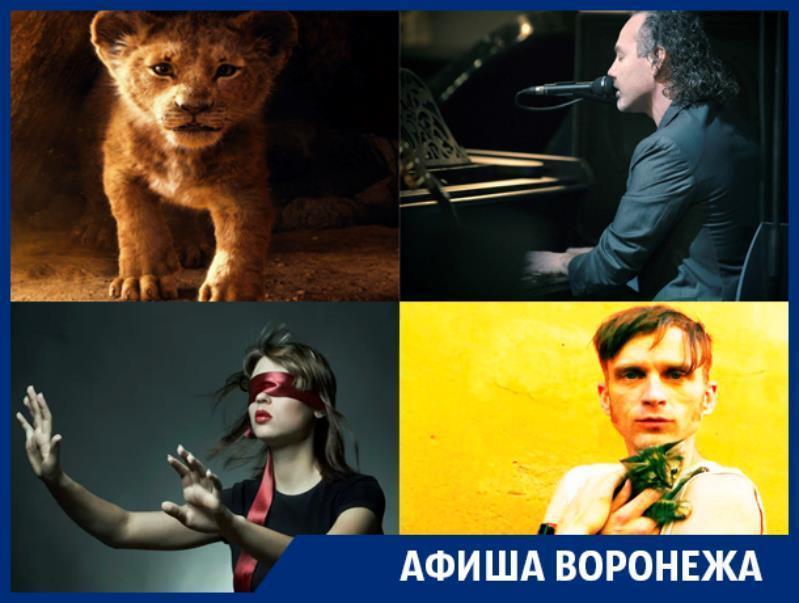 Куда сходить в Воронеже: «Король Лев», Stephen Paul Taylor, музыка в темноте и Джанго