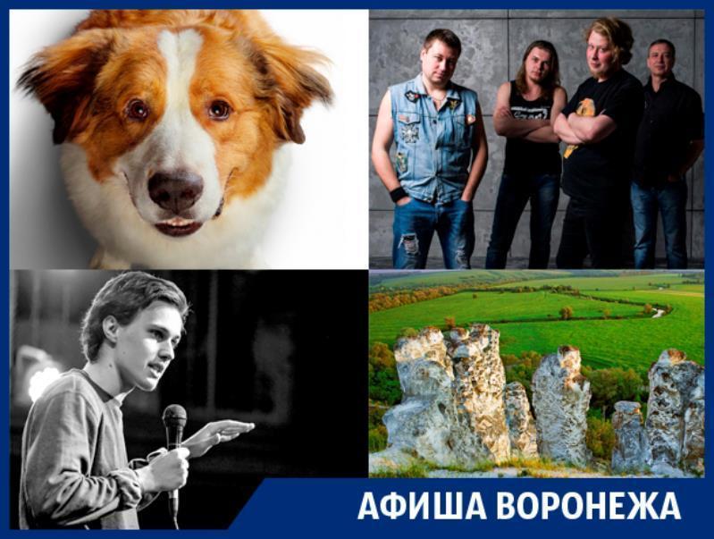 Куда сходить в Воронеже:  ночь в Дивногорье, Порараз Бирацца и «Собачья жизнь 2»