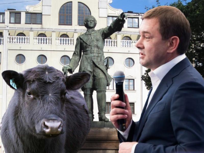 Бренды Петра I и мраморной говядины решил присвоить лидер воронежских единороссов