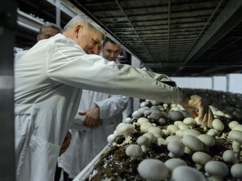 Знатоком отличных грибов показал себя Александр Гусев