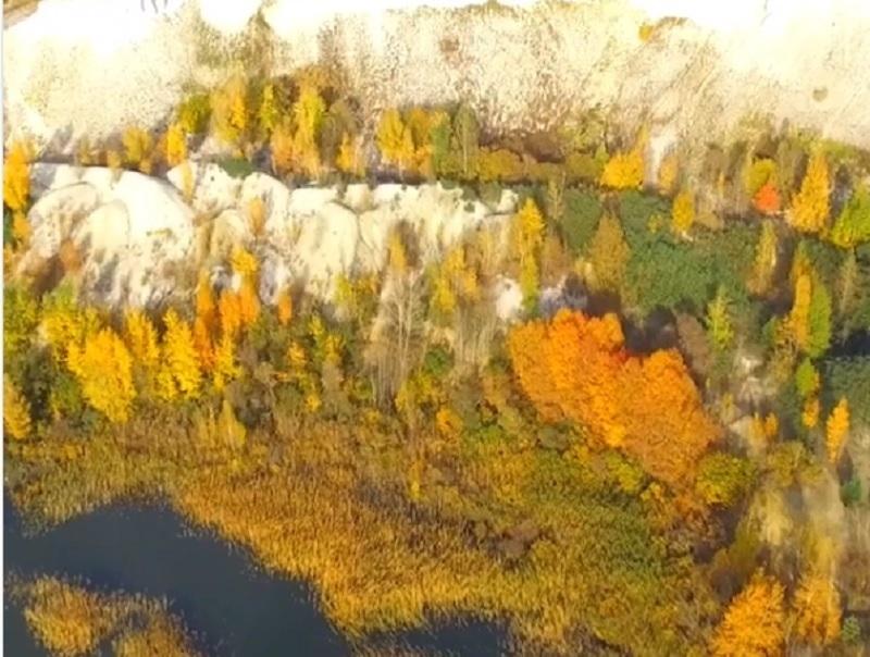 Красоту осенней воронежской земли сняли с высоты птичьего полета