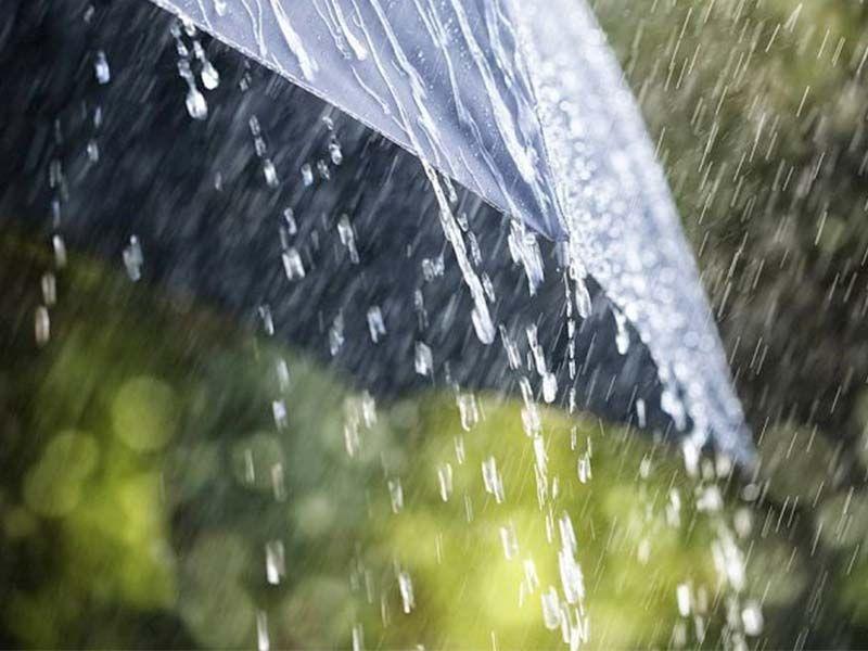 Воронежцев на следующей неделе ждут небольшие дожди и ветра
