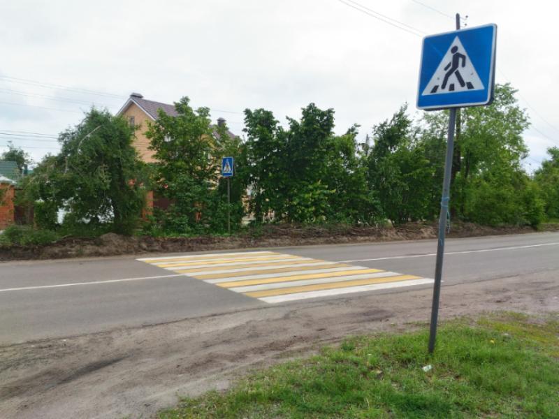 Переход безысходности и страданий нашли в Воронеже