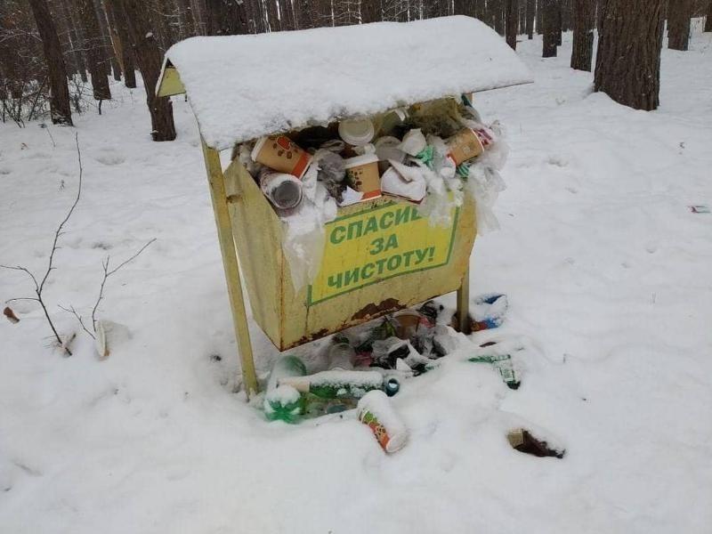 Мэр Кстенин проследит за мусором в Воронеже