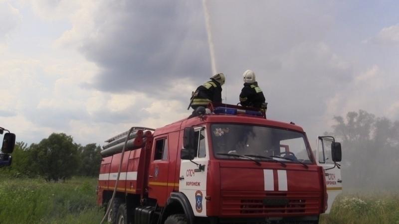 Воронежские спасатели в ходе учений потушили лесной пожар