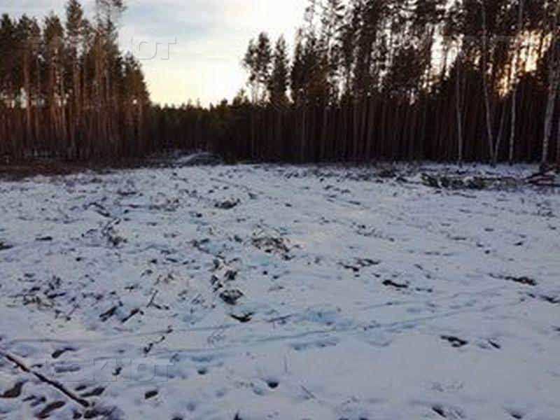 С владельцев «Рамонских дач» Воронежский заповедник попробует взыскать 144 млн руб
