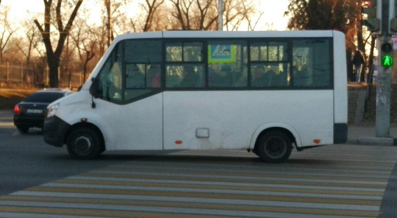 Маршрутчик запретил пешеходам переходить дорогу по зебре в Воронеже