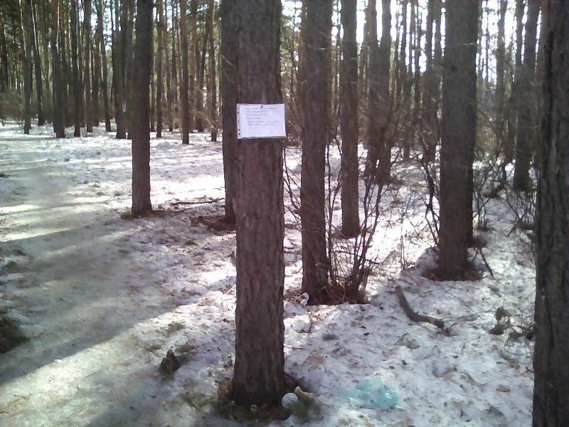 Воронежцам посоветовали засовывать мусор себе в трусы