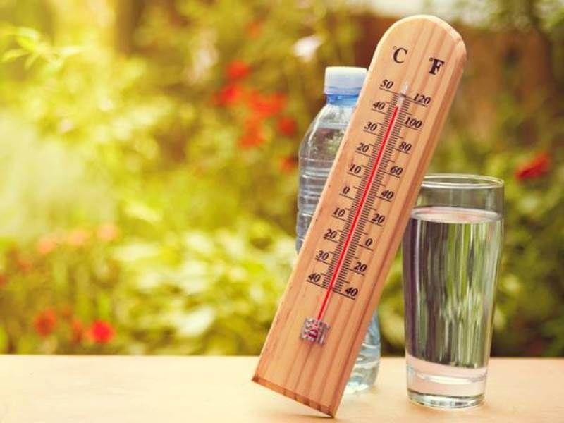 34-градусную жару пообещали воронежцам в Гидрометцентре