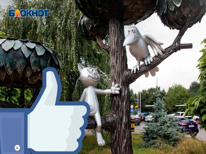 Как в Сети издеваются над Воронежем мемами