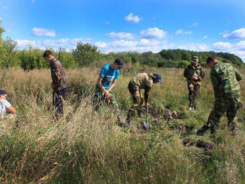 Останки бойцов РККА и вермахта нашли у исчезнувшего хутора в Воронежской области