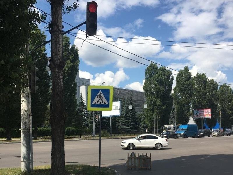 Мэрия Воронежа разобралась с деревом, которое мешало светофору