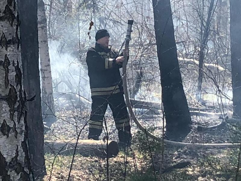 Опубликованы фото мощного ландшафтного пожара в Воронеже