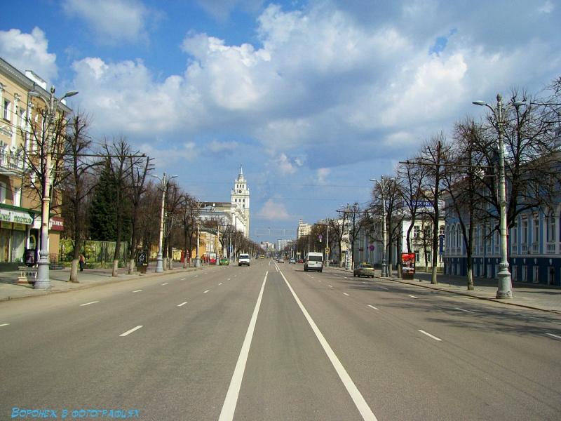 Масштабное благоустройство проспекта Революции в Воронеже отложили