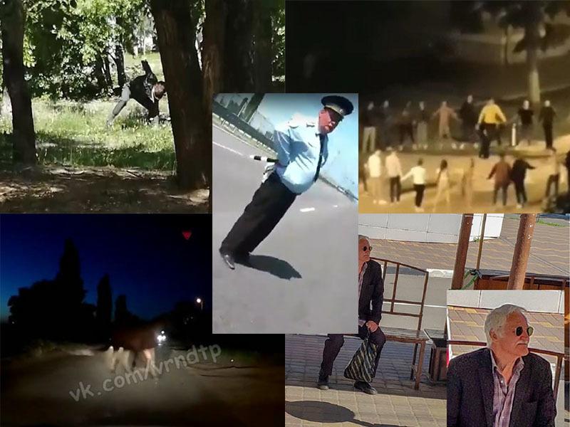 Полицейский-шутник и еще четыре несуразные новости из Воронежа