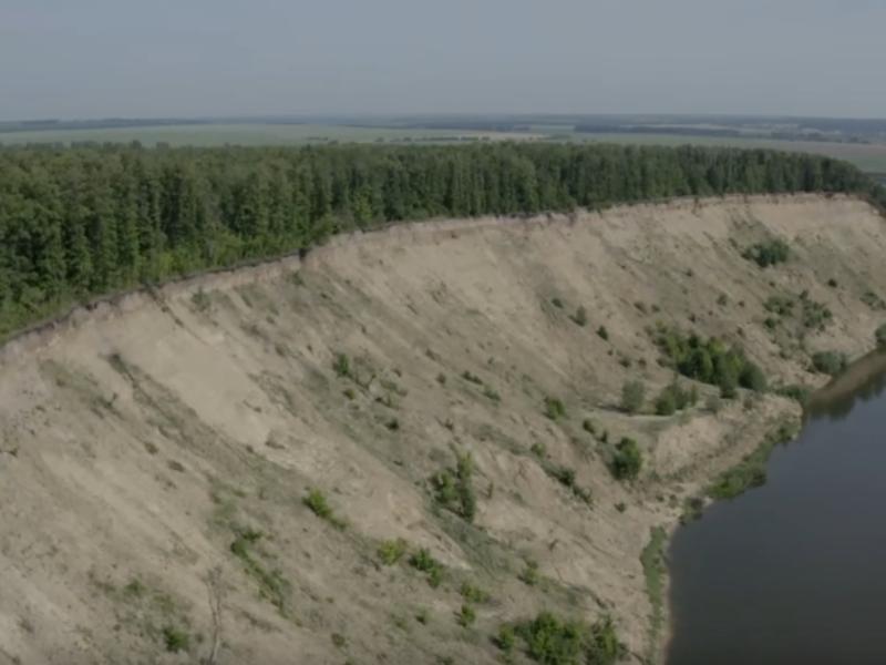 Удивительную прелесть воронежской природы показали на видео с воздуха