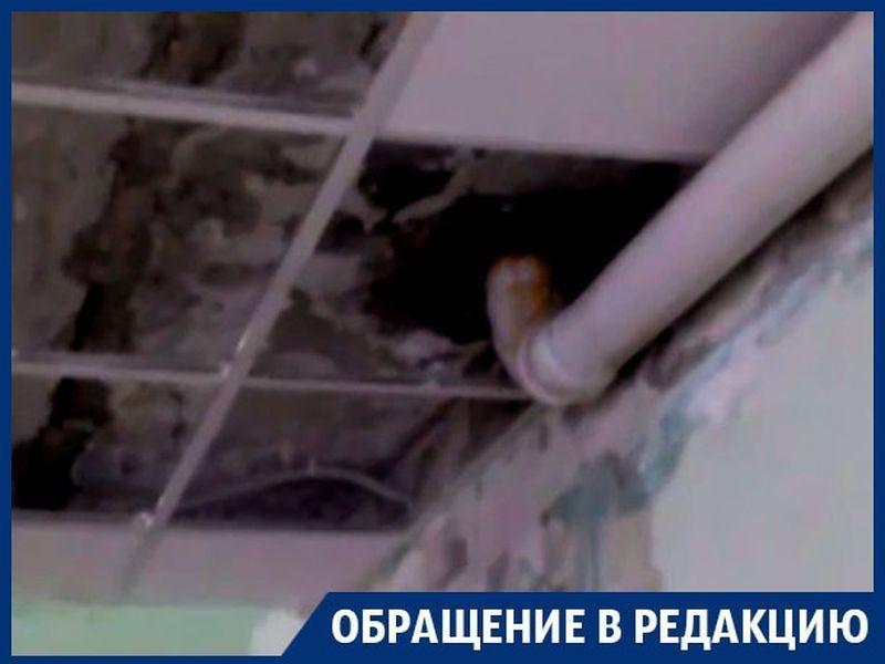 Дети получают мокрые знания из-за прохудившейся крыши в Воронеже