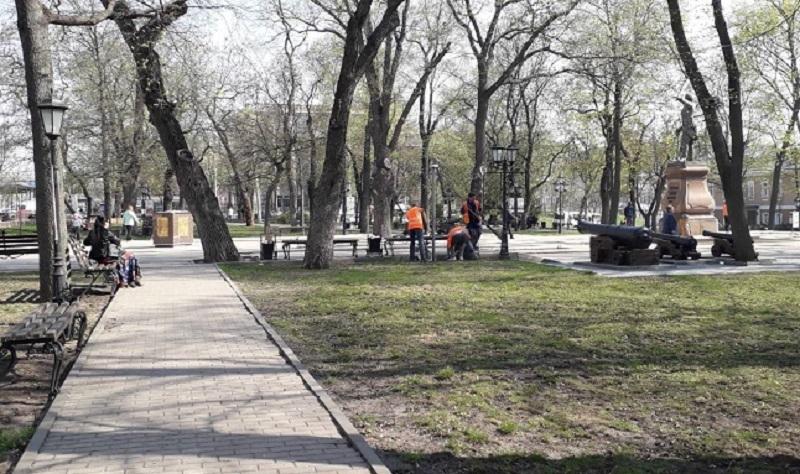Мэрия Воронежа прокомментировала мусорное бедствие в Петровском сквере