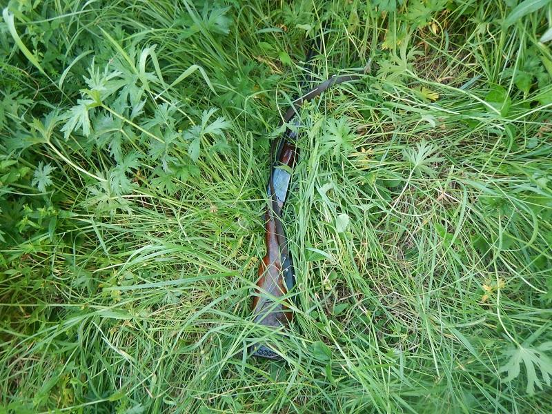 Вооруженного браконьера задержали на территории воронежского заповедника.