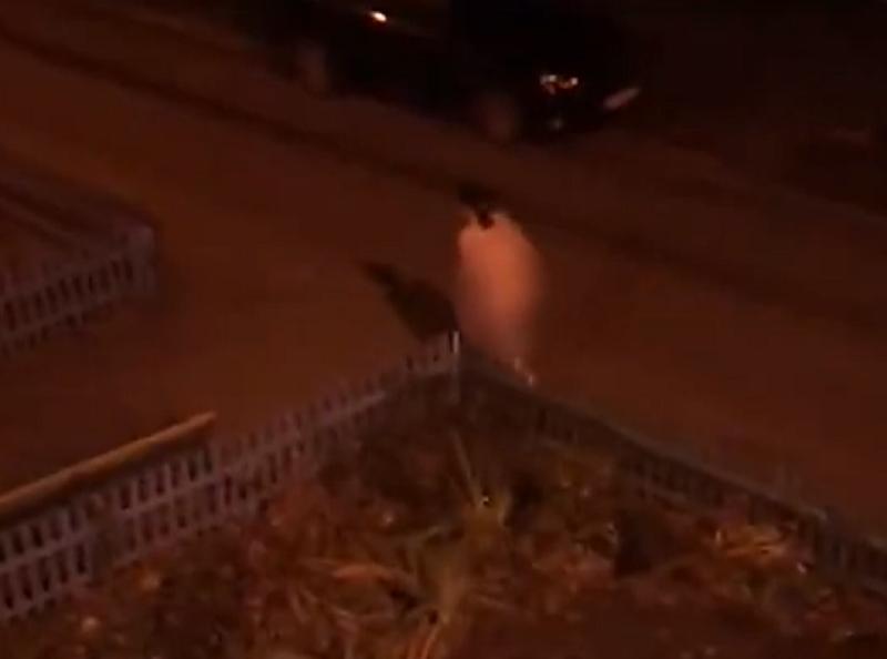 Голая женщина бегала по улицам и приставала к людям в Воронеже