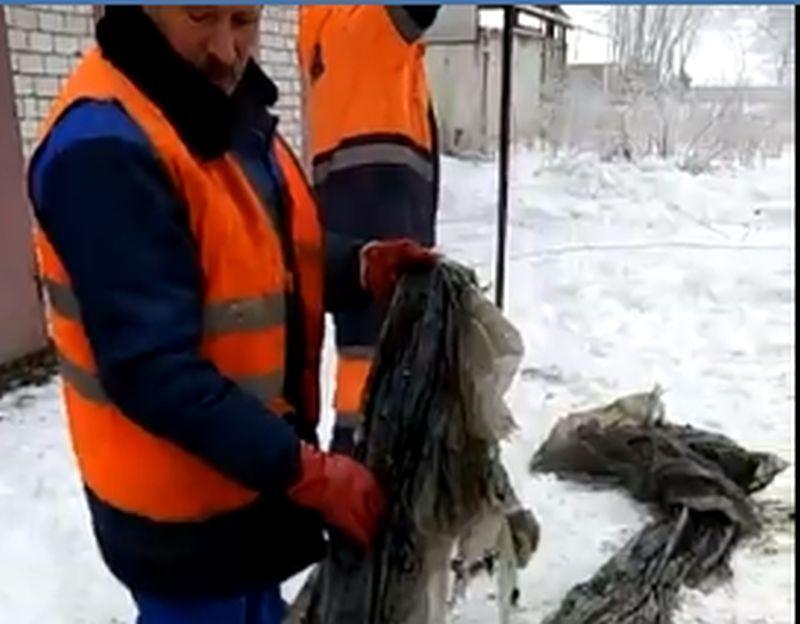 Извлечение 10 кг пленки из канализации в Воронеже попало на видео
