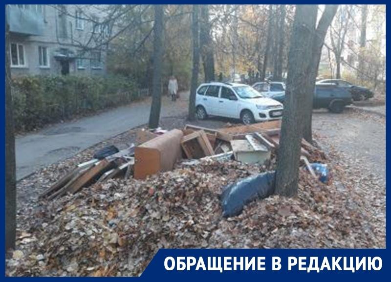 Стихийная помойка из мебели и гнилых листьев возмутила воронежцев
